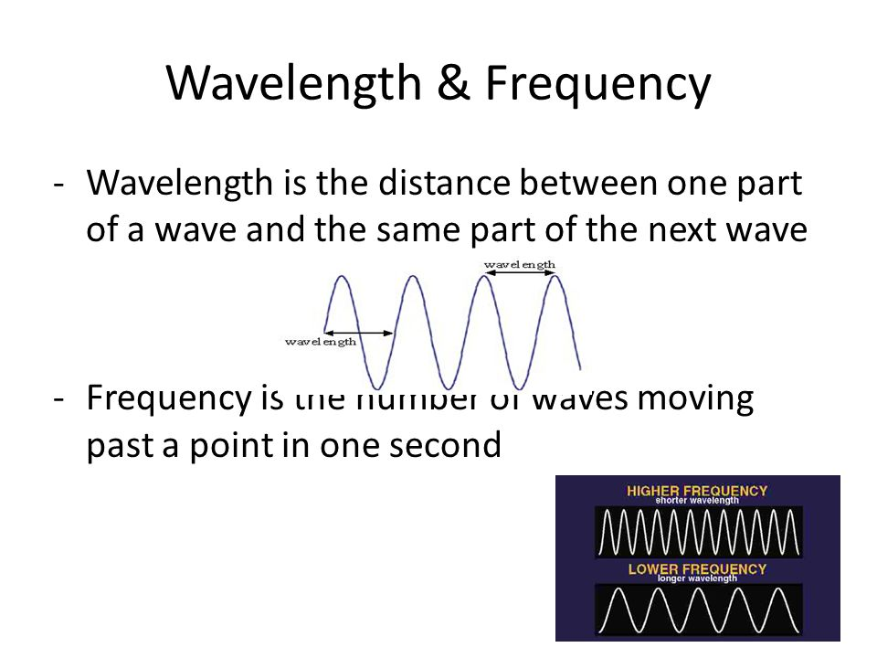 Compression -Where molecules are being pressed together as the sound waves move through matter -For example, -a wave travels through the springs just