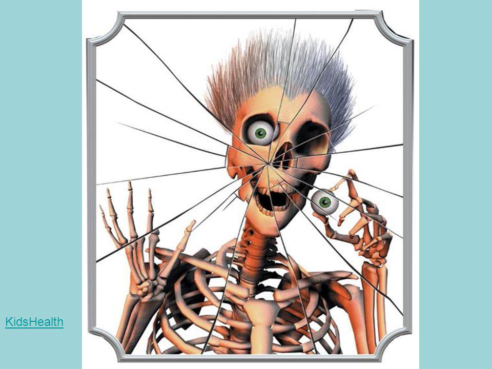 Human Skeleton 9