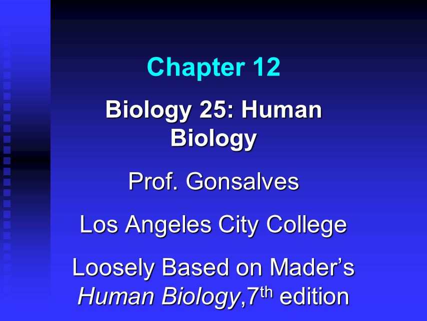 Chapter 12 Biology 25: Human Biology Prof. Gonsalves Los Angeles City College Loosely Based on Mader's Human Biology,7 th edition