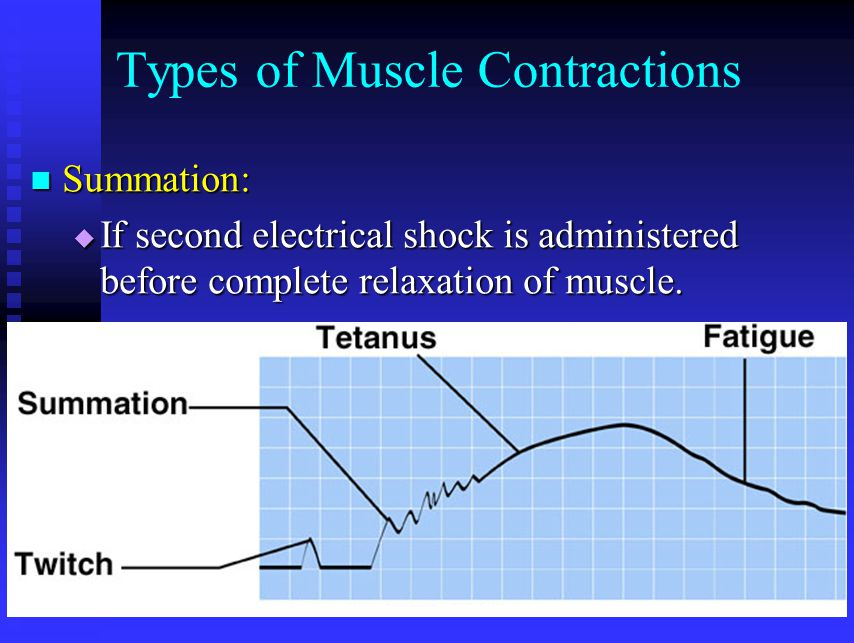 Types of Muscle Contractions Summation: Summation:  If second electrical shock is administered before complete relaxation of muscle.