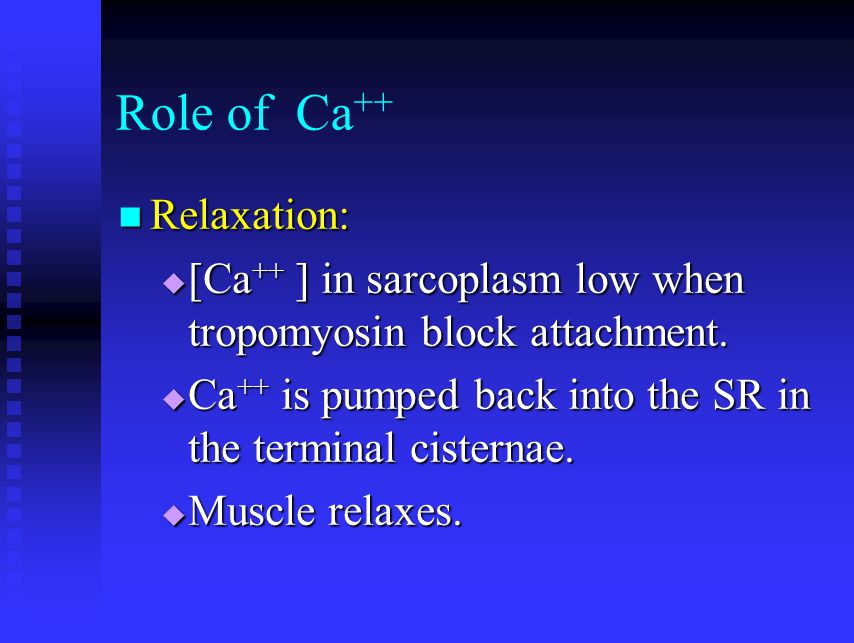 Role of Ca ++ Relaxation: Relaxation:  [Ca ++ ] in sarcoplasm low when tropomyosin block attachment.  Ca ++ is pumped back into the SR in the termin