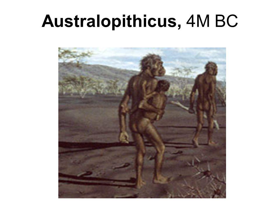 Australopithicus, 4M BC