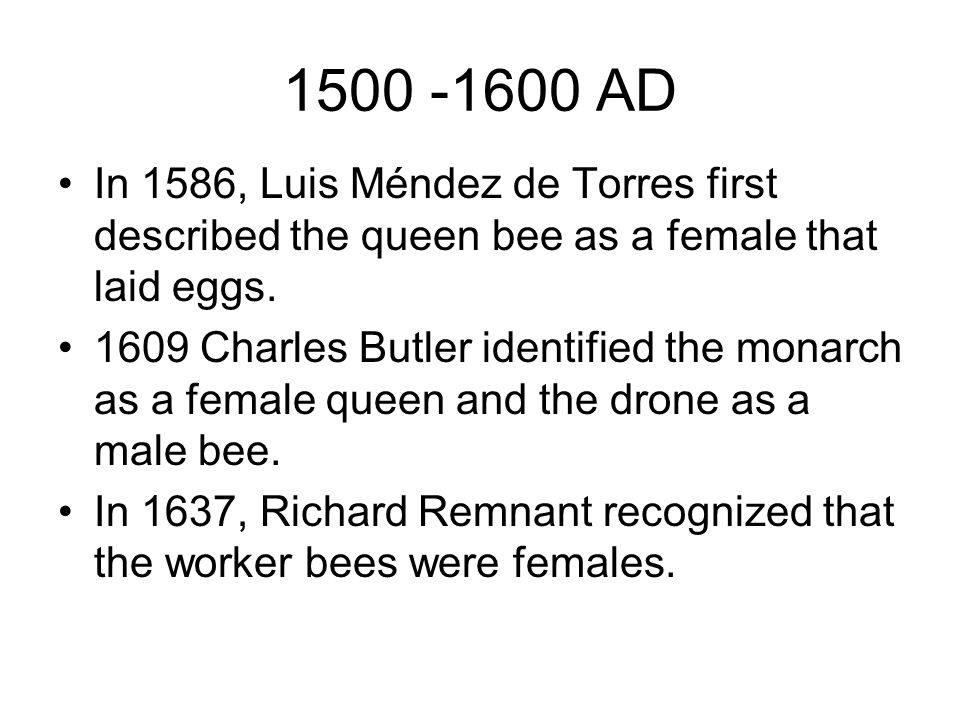 1500 -1600 AD In 1586, Luis Méndez de Torres first described the queen bee as a female that laid eggs.