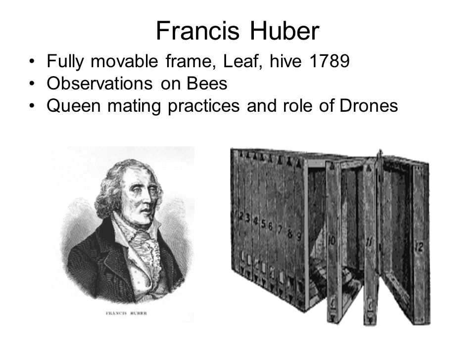 Francis Huber Fully movable frame, Leaf, hive 1789 Observations on Bees Queen mating practices and role of Drones