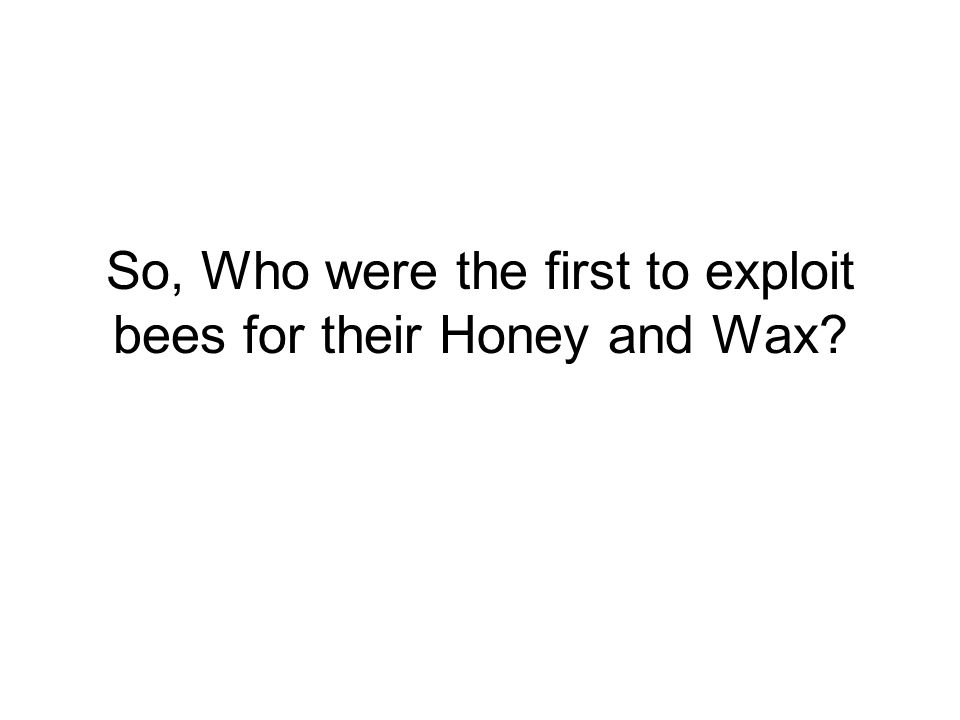 So, Who were the first to exploit bees for their Honey and Wax
