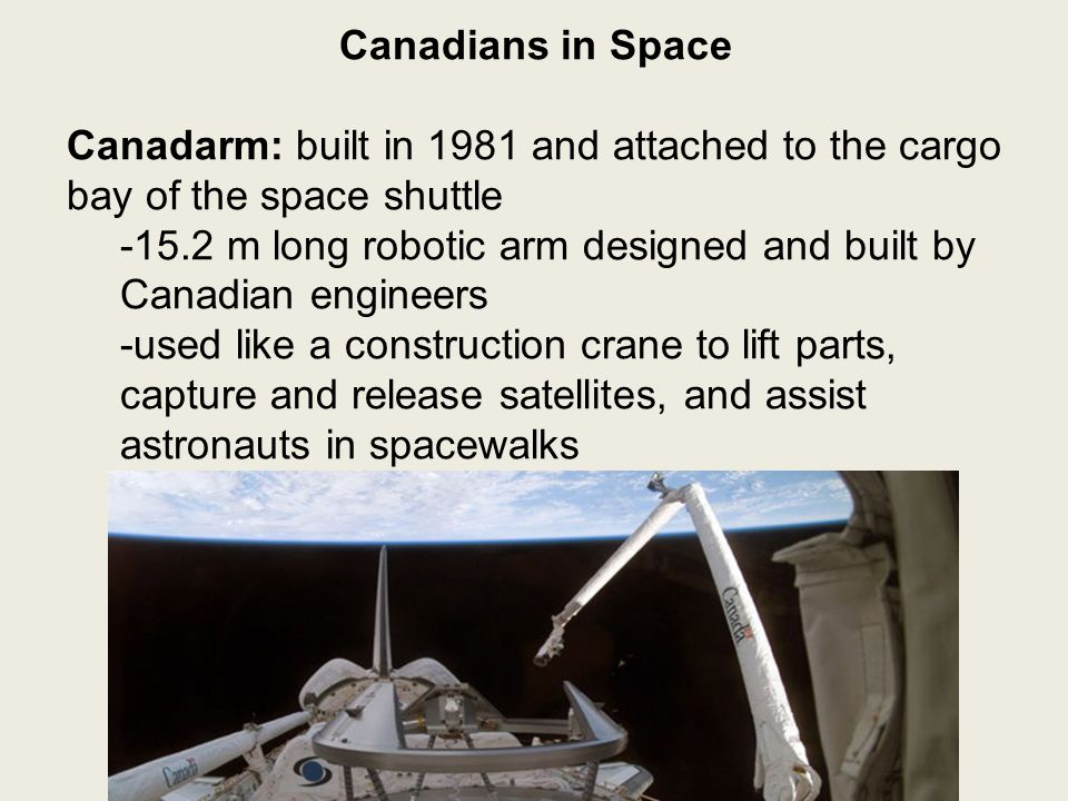 Canadians in Space Canadarm: built in 1981 and attached to the cargo bay of the space shuttle -15.2 m long robotic arm designed and built by Canadian engineers -used like a construction crane to lift parts, capture and release satellites, and assist astronauts in spacewalks