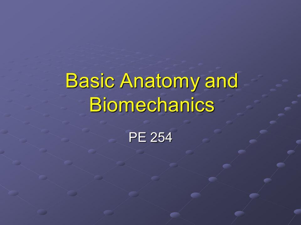 Basic Anatomy and Biomechanics PE 254