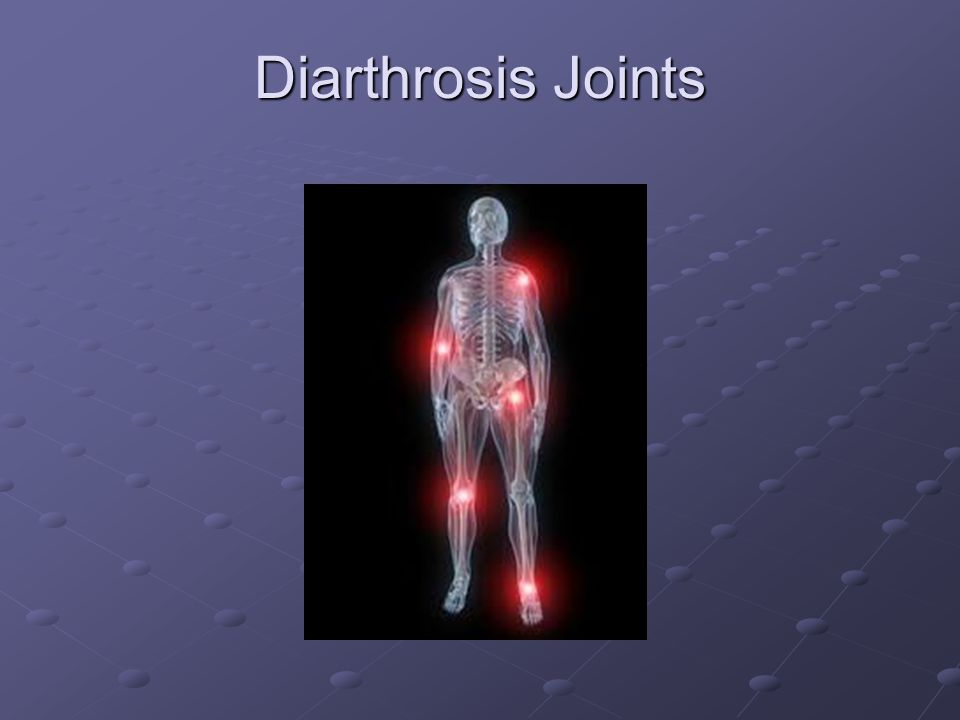 Diarthrosis Joints