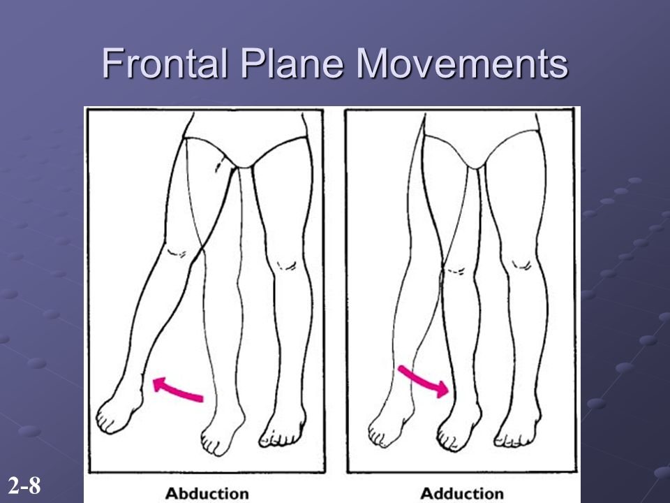 2-8 Frontal Plane Movements