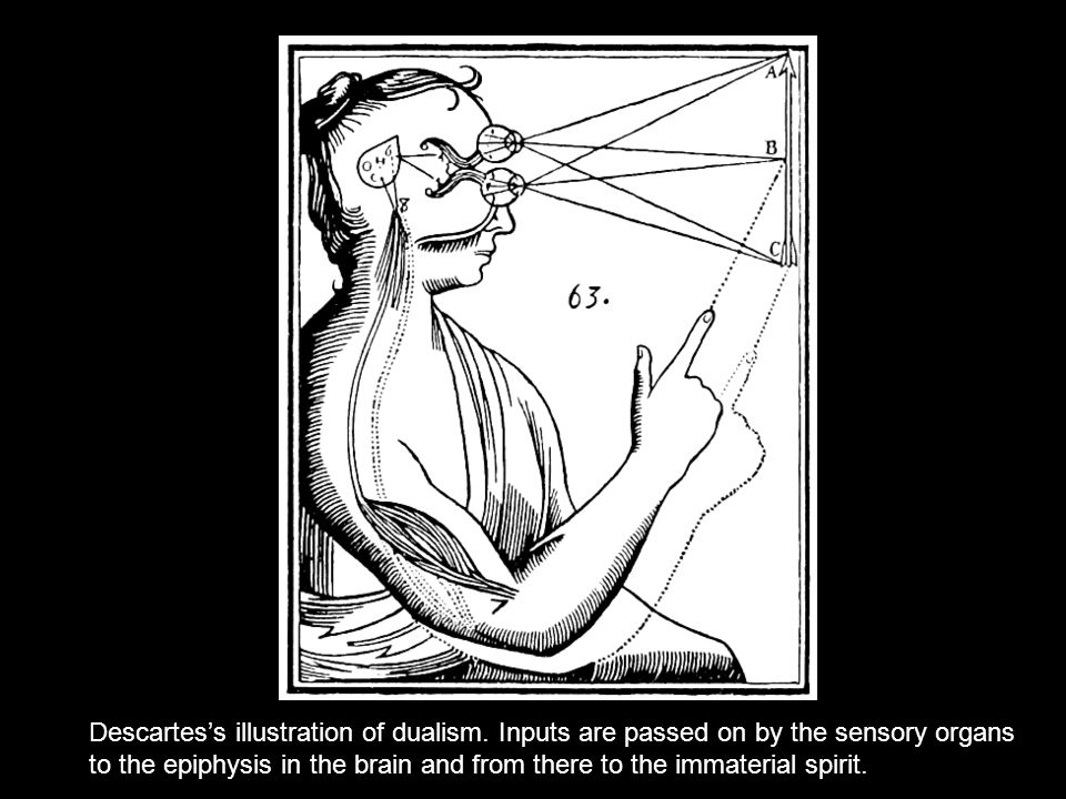 Descartes's illustration of dualism.