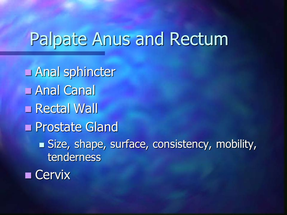 Palpate Anus and Rectum Anal sphincter Anal sphincter Anal Canal Anal Canal Rectal Wall Rectal Wall Prostate Gland Prostate Gland Size, shape, surface