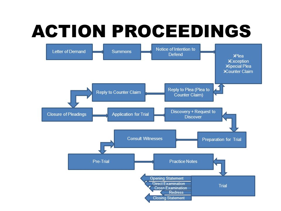 ACTION PROCEEDINGS Letter of DemandSummons Notice of Intention to Defend  Plea  Exception  Special Plea  Counter Claim Reply to Plea (Plea to Coun