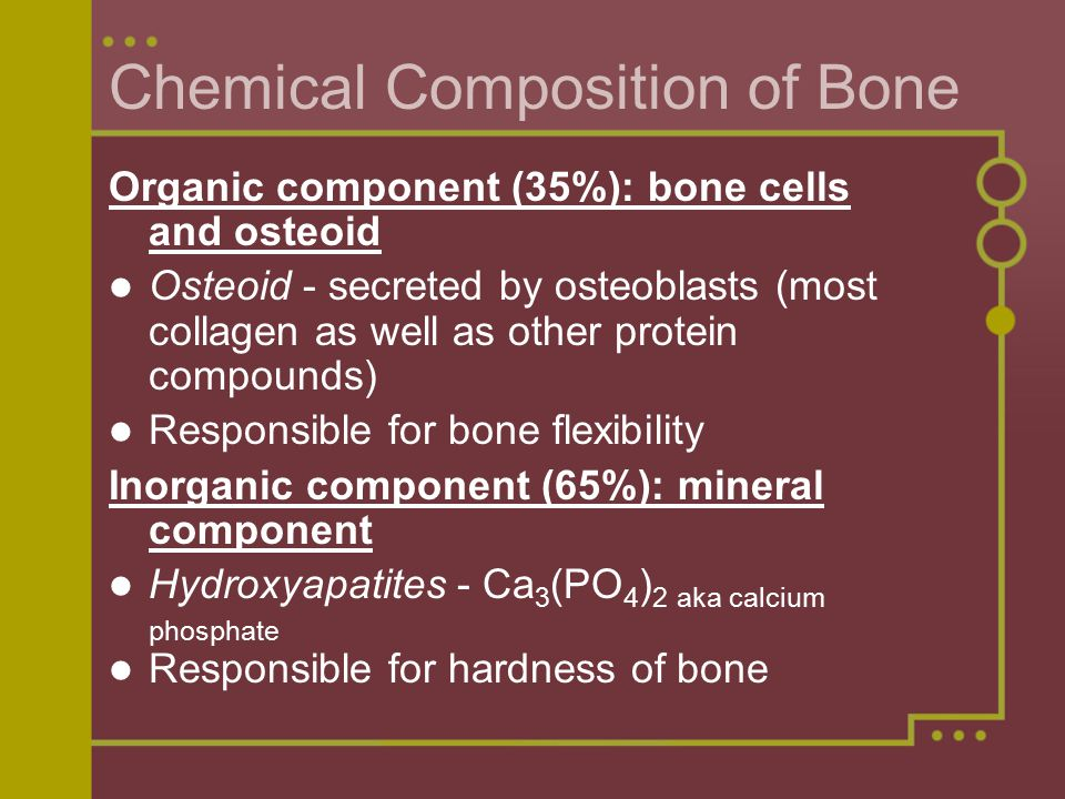 Chemical Composition of Bone Organic component (35%): bone cells and osteoid Osteoid - secreted by osteoblasts (most collagen as well as other protein compounds) Responsible for bone flexibility Inorganic component (65%): mineral component Hydroxyapatites - Ca 3 (PO 4 ) 2 aka calcium phosphate Responsible for hardness of bone