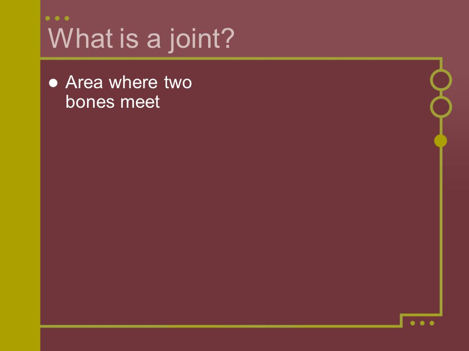 What is a joint Area where two bones meet