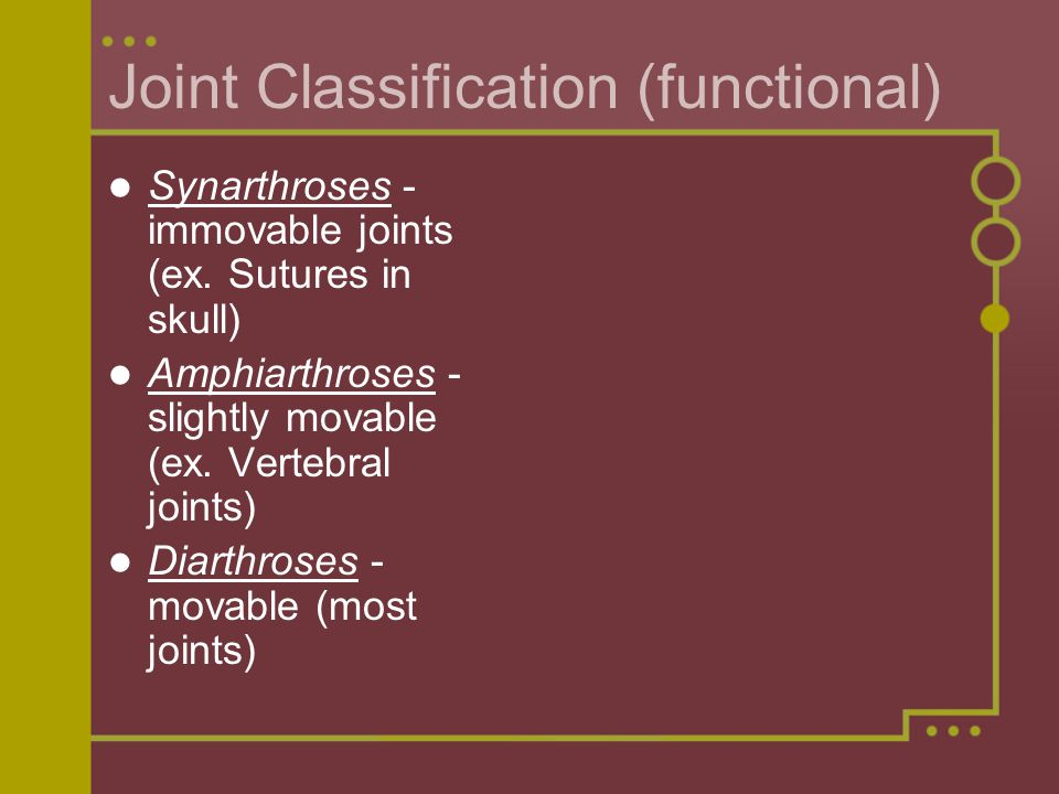 Joint Classification (functional) Synarthroses - immovable joints (ex.