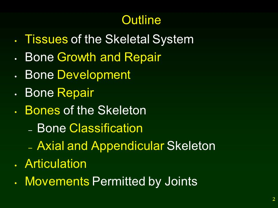 12 Bone Development and Growth Ossification refers to bone formation.