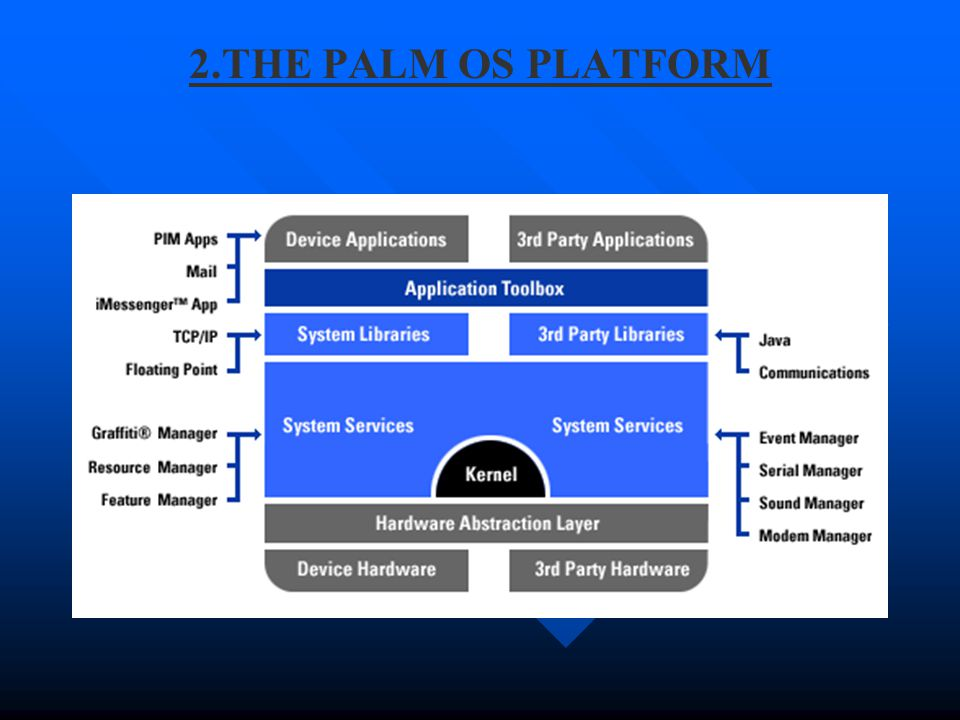 2.THE PALM OS PLATFORM