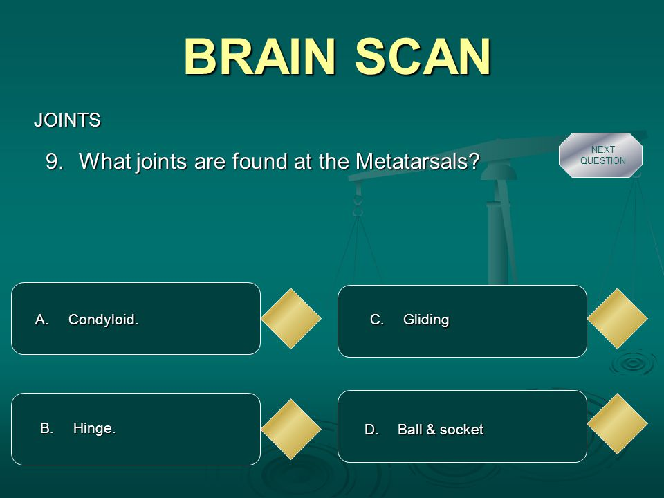 BRAIN SCAN JOINTS A. Condyloid. 9. What joints are found at the Metatarsals.