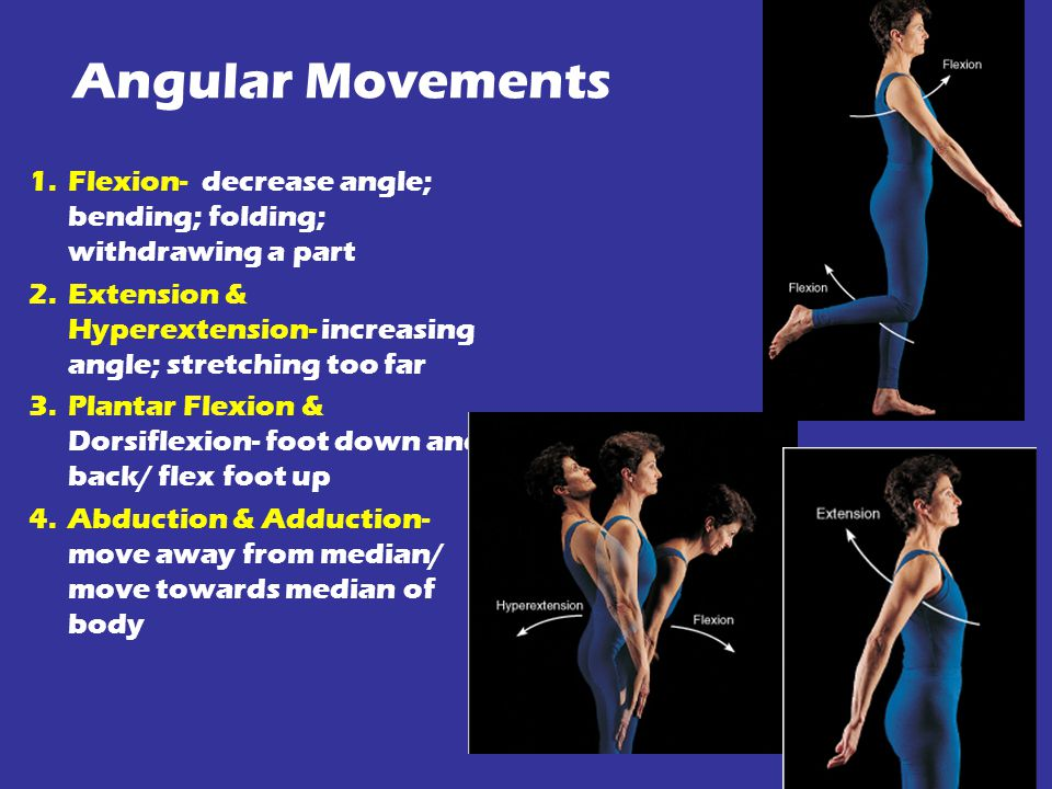Angular Movements 1.Flexion- decrease angle; bending; folding; withdrawing a part 2.Extension & Hyperextension- increasing angle; stretching too far 3.Plantar Flexion & Dorsiflexion- foot down and back/ flex foot up 4.Abduction & Adduction- move away from median/ move towards median of body
