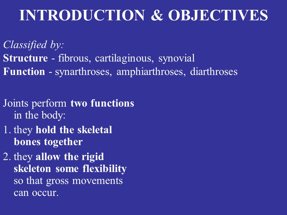 INTRODUCTION & OBJECTIVES Joints perform two functions in the body: 1.they hold the skeletal bones together 2.they allow the rigid skeleton some flexibility so that gross movements can occur.