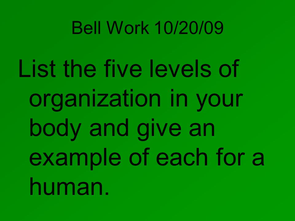 Bell Work 10/20/09 List the five levels of organization in your body and give an example of each for a human.