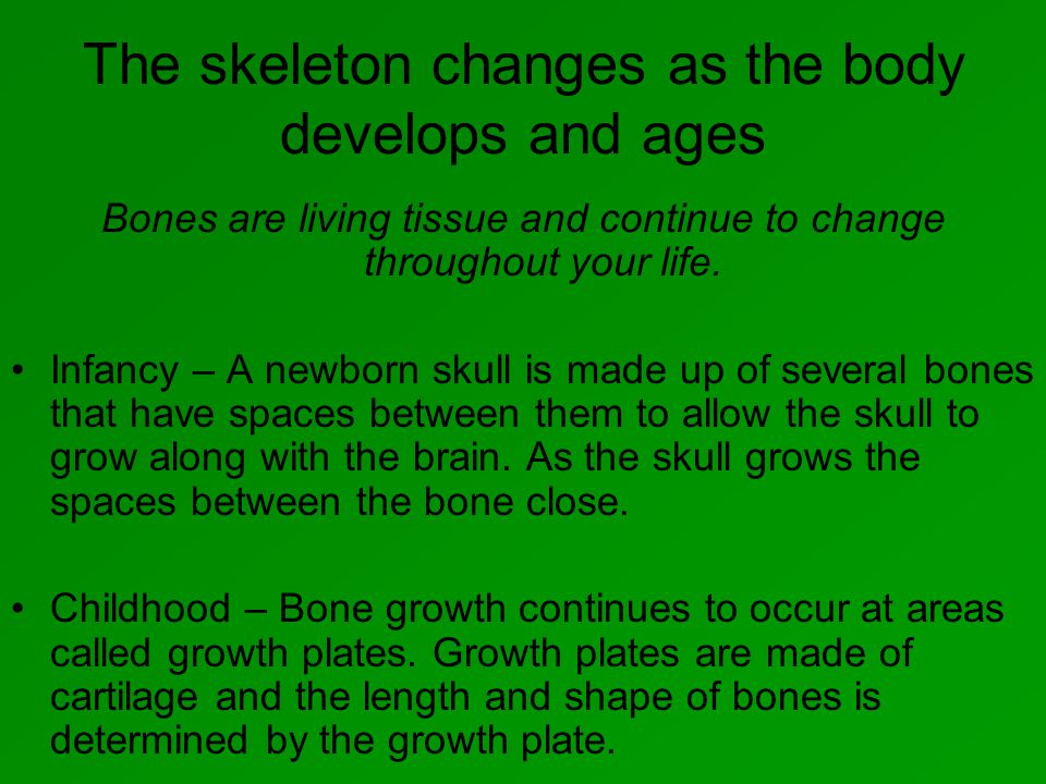 The skeleton changes as the body develops and ages Bones are living tissue and continue to change throughout your life.