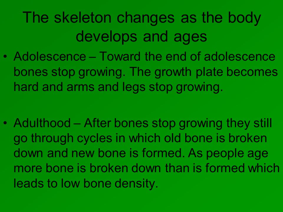 The skeleton changes as the body develops and ages Adolescence – Toward the end of adolescence bones stop growing.