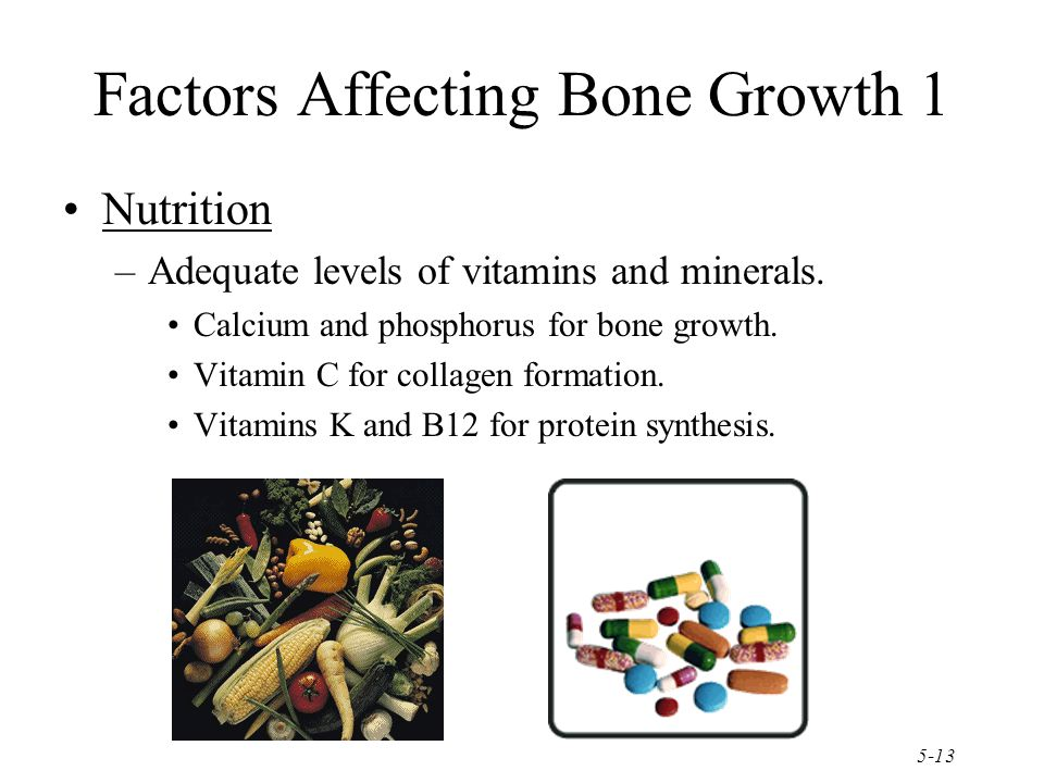 5-13 Factors Affecting Bone Growth 1 Nutrition –Adequate levels of vitamins and minerals.