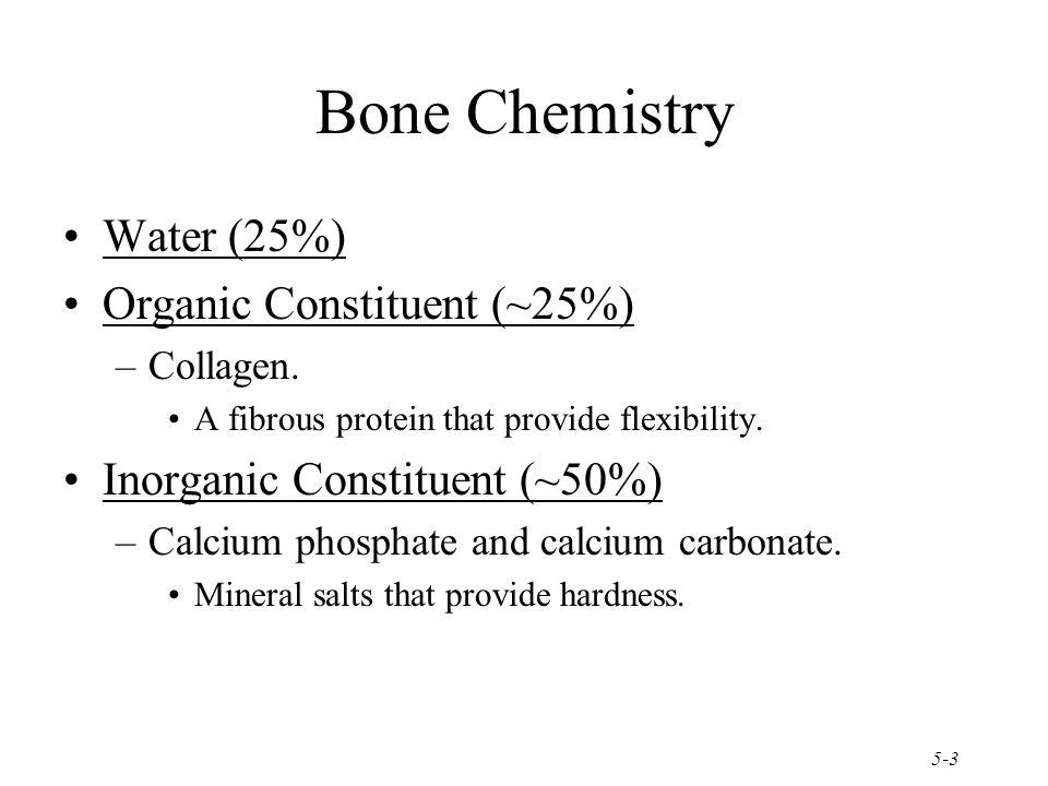 5-3 Bone Chemistry Water (25%) Organic Constituent (~25%) –Collagen. A fibrous protein that provide flexibility. Inorganic Constituent (~50%) –Calcium