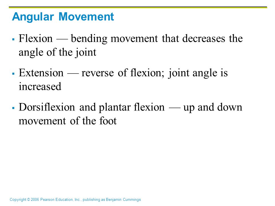 Copyright © 2006 Pearson Education, Inc., publishing as Benjamin Cummings Angular Movement  Flexion — bending movement that decreases the angle of the joint  Extension — reverse of flexion; joint angle is increased  Dorsiflexion and plantar flexion — up and down movement of the foot
