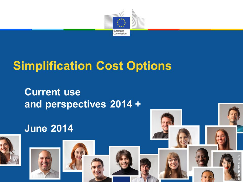 © Shutterstock - olly Simplification Cost Options Current use and perspectives 2014 + June 2014