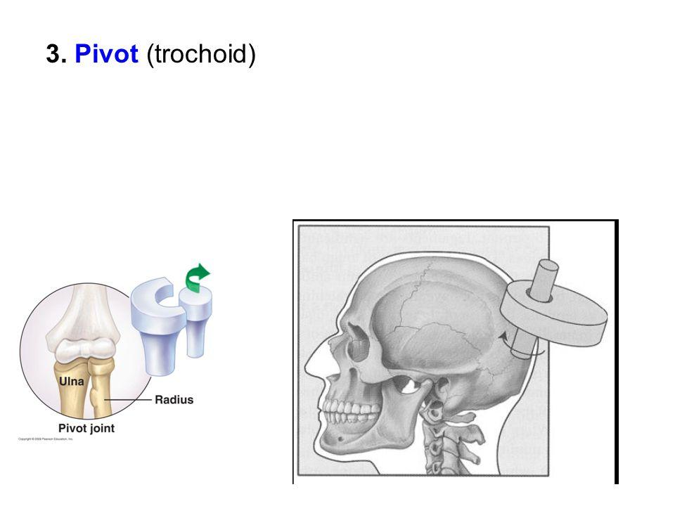 3. Pivot (trochoid)