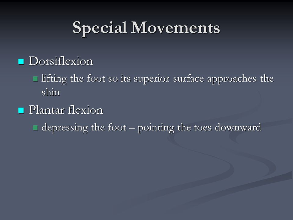 Special Movements Dorsiflexion Dorsiflexion lifting the foot so its superior surface approaches the shin lifting the foot so its superior surface appr