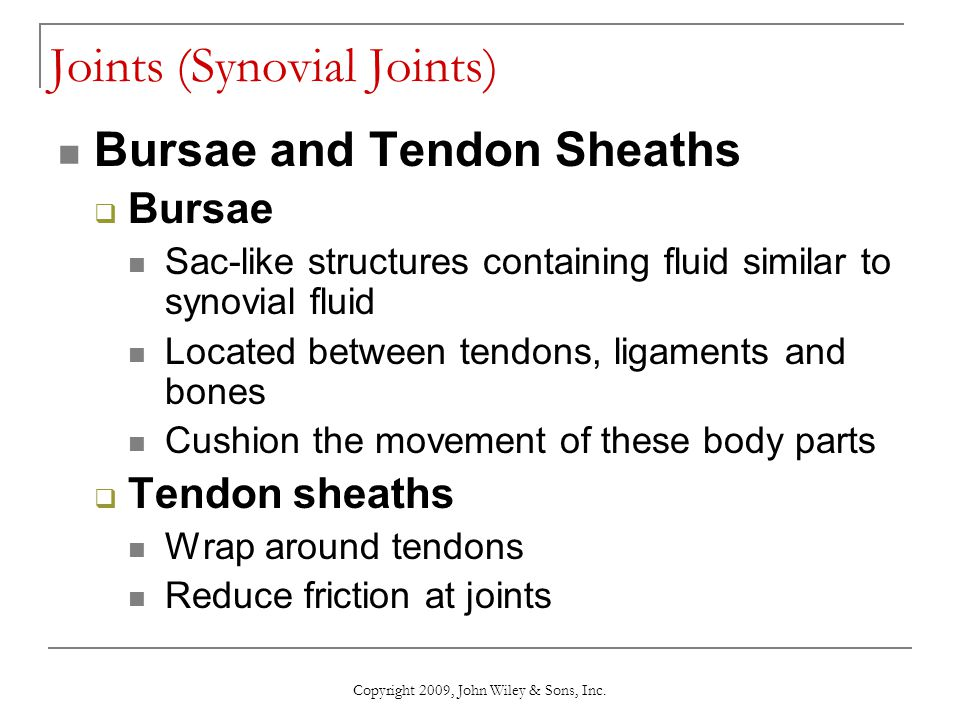 Copyright 2009, John Wiley & Sons, Inc. Joints (Synovial Joints) Bursae and Tendon Sheaths  Bursae Sac-like structures containing fluid similar to sy