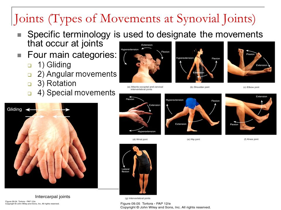Joints (Types of Movements at Synovial Joints) Specific terminology is used to designate the movements that occur at joints Four main categories:  1)