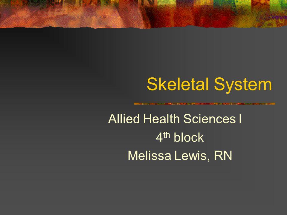 Skeletal System Allied Health Sciences I 4 th block Melissa Lewis, RN