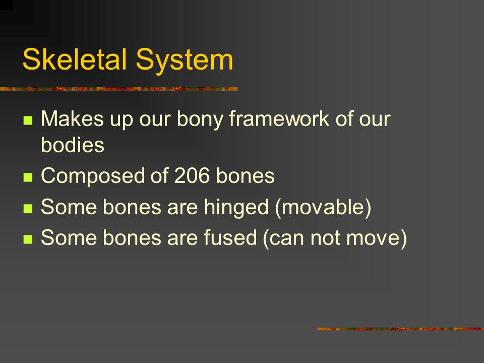 Joints & Related Structures Joints/articulations = points of contact b/w 2 bones These joints are classified into 3 main types according to their degree of movement 1.