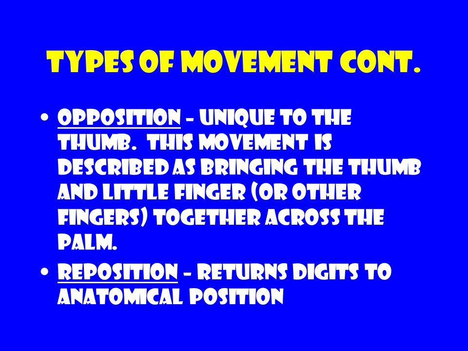 Types of movement cont. Opposition – unique to the thumb. This movement is described as bringing the thumb and little finger (or other fingers) togeth