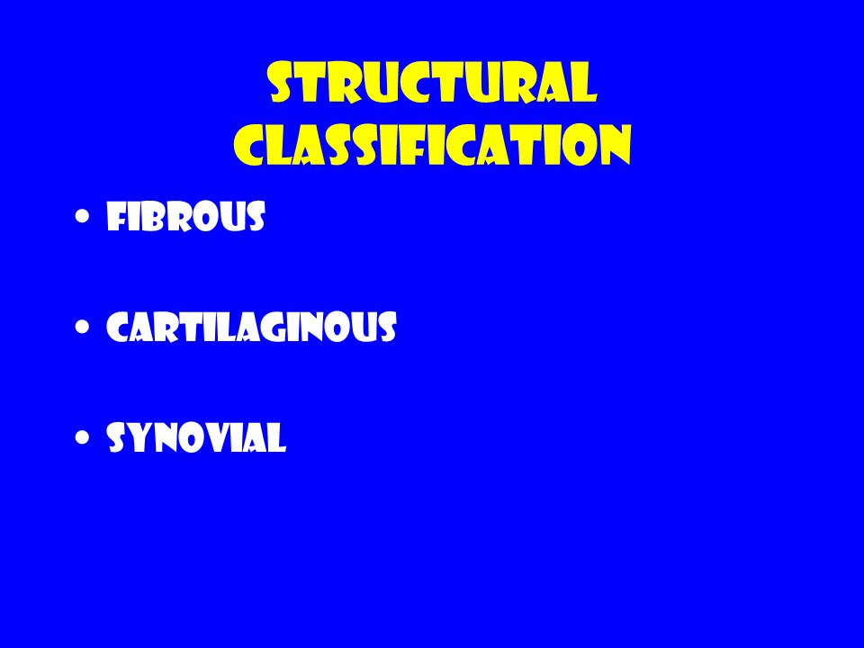Structural Classification Fibrous Cartilaginous Synovial