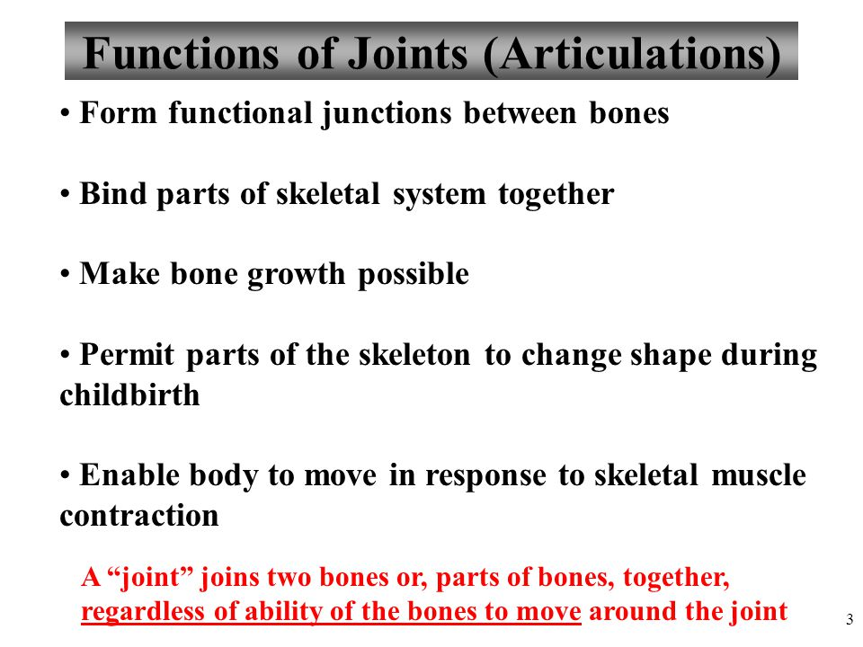 3 Functions of Joints (Articulations) Form functional junctions between bones Bind parts of skeletal system together Make bone growth possible Permit