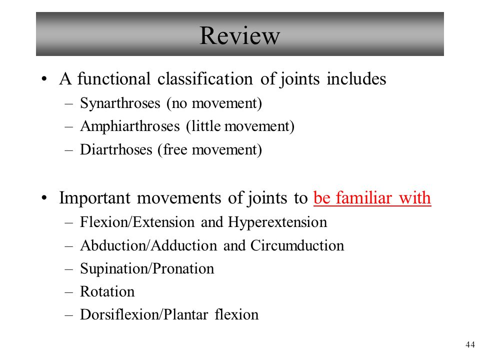 44 Review A functional classification of joints includes –Synarthroses (no movement) –Amphiarthroses (little movement) –Diartrhoses (free movement) Im