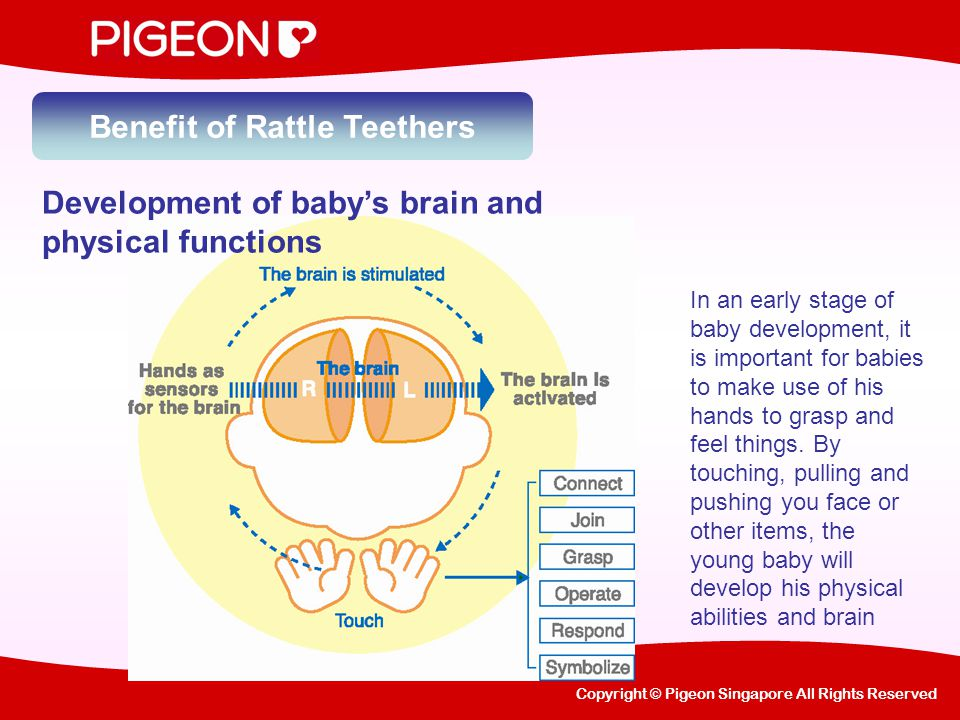 Copyright © Pigeon Singapore All Rights Reserved Benefit of Rattle Teethers Sound captivates baby's attention and aids parents to check baby's hearing in early stage.