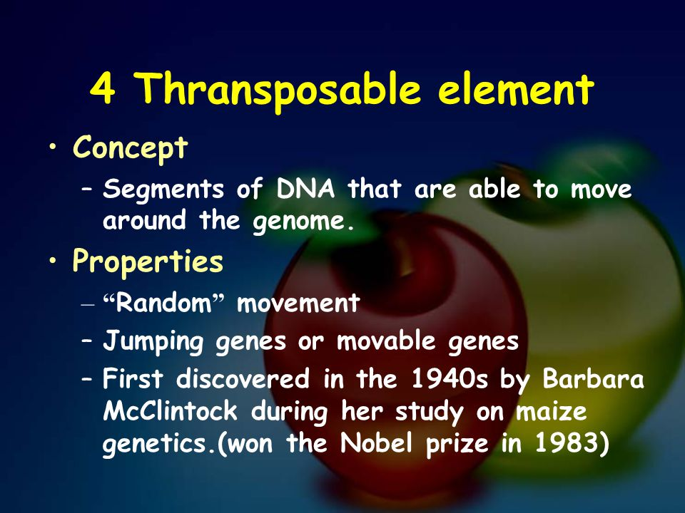 "4 Thransposable element Concept –Segments of DNA that are able to move around the genome. Properties –"" Random "" movement –Jumping genes or movable ge"