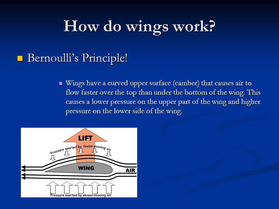How do wings work? Bernoulli's Principle! Bernoulli's Principle! Wings have a curved upper surface (camber) that causes air to flow faster over the to