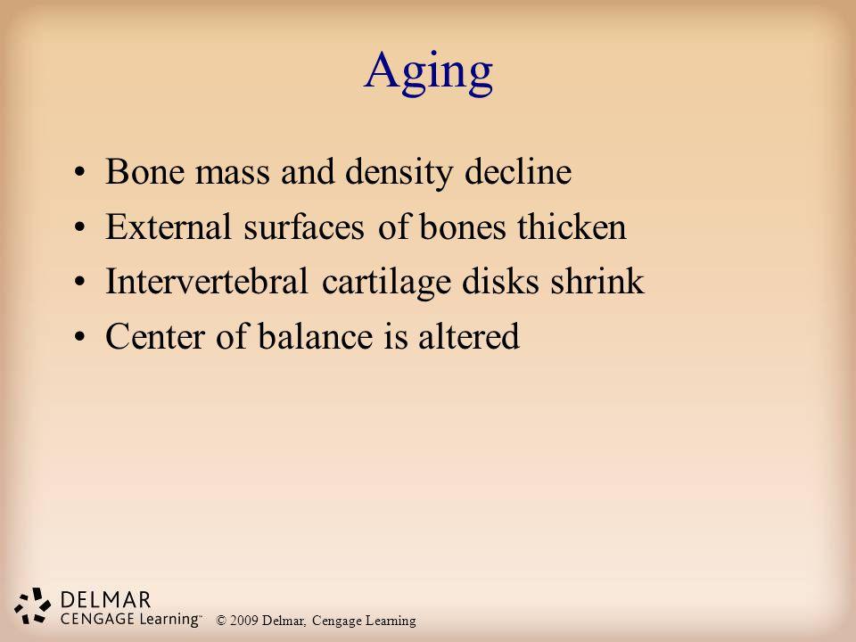 © 2009 Delmar, Cengage Learning Aging Bone mass and density decline External surfaces of bones thicken Intervertebral cartilage disks shrink Center of
