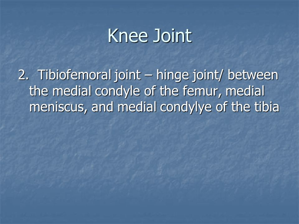 Knee Joint 2. Tibiofemoral joint – hinge joint/ between the medial condyle of the femur, medial meniscus, and medial condylye of the tibia