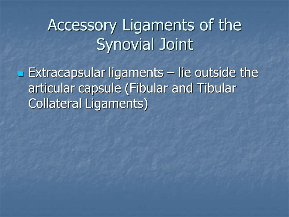 Accessory Ligaments of the Synovial Joint Extracapsular ligaments – lie outside the articular capsule (Fibular and Tibular Collateral Ligaments) Extra
