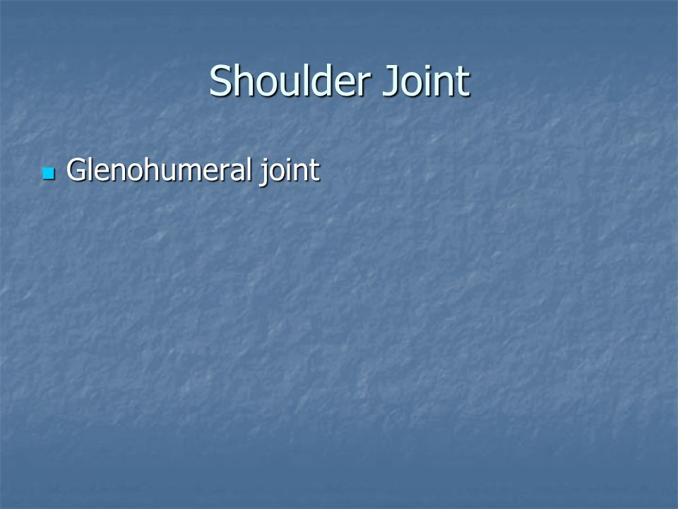 Shoulder Joint Glenohumeral joint Glenohumeral joint