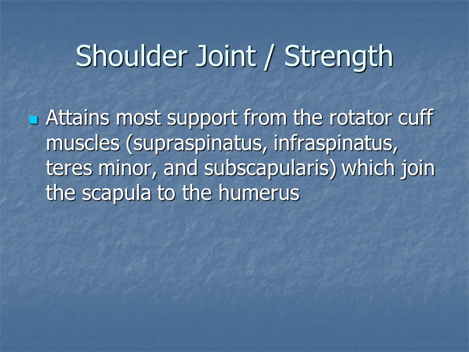 Shoulder Joint / Strength Attains most support from the rotator cuff muscles (supraspinatus, infraspinatus, teres minor, and subscapularis) which join