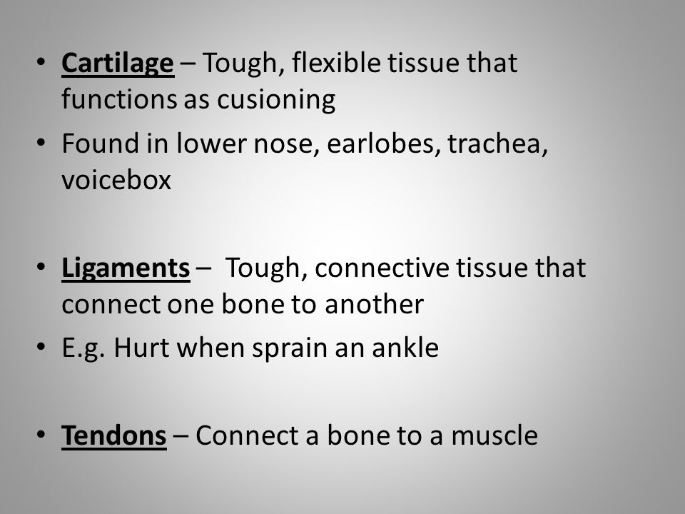 Cartilage – Tough, flexible tissue that functions as cusioning Found in lower nose, earlobes, trachea, voicebox Ligaments – Tough, connective tissue that connect one bone to another E.g.